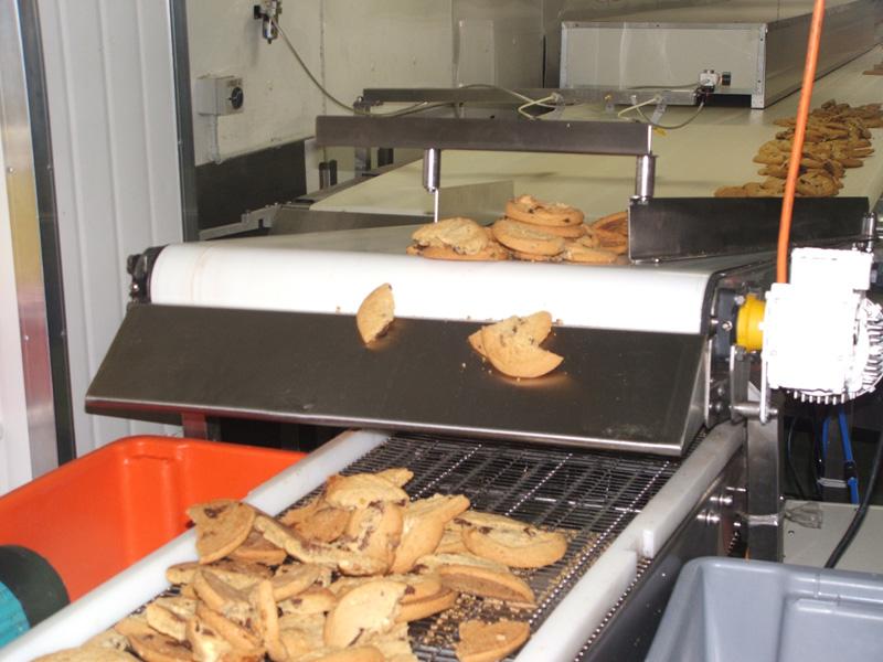 Biscuit conveyor belt