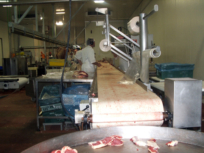 Mutton and beef boning room belts